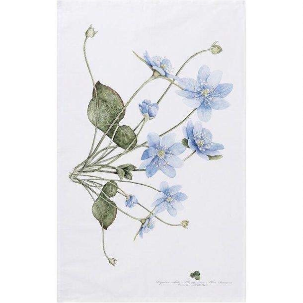 ØKOLOGISK VISKESTYKKE - Blå anemone